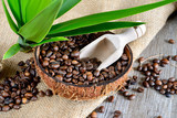 coffe beans in coconut