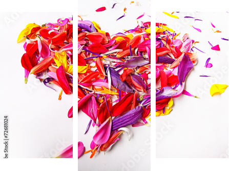 heart of the concept of flower petals on a white background  - Dreiteiliges Bild, Triptychon