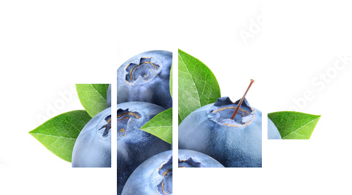 Fresh blueberries isolated on white - Vierteiliges Leinwandbild, Viertychon