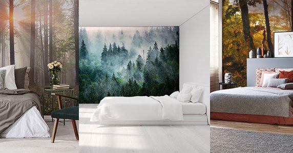 Fototapeten Wald: Birke, tropisch, im Nebel - Fixar