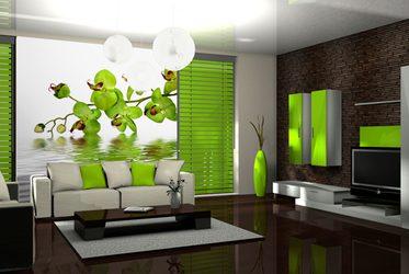 der geruch der birken - fototapete fürs wohnzimmer - wohnzimmer, Hause deko
