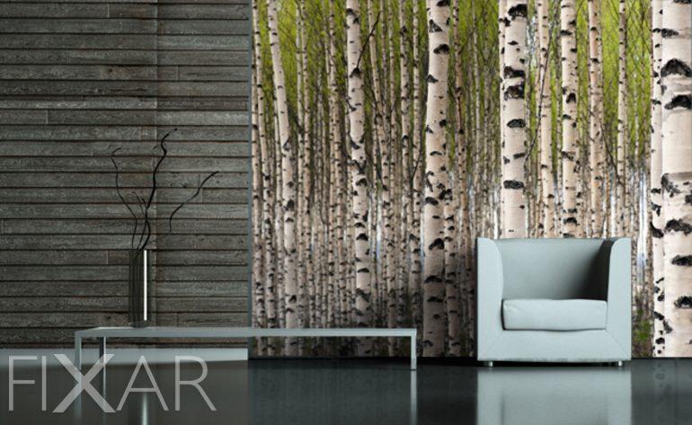 Der Geruch der Birken - Fototapete fürs Wohnzimmer - Wohnzimmer ...