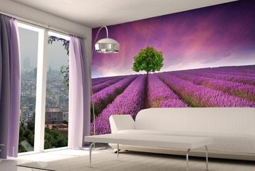 feigenparadies fototapeten f r k che k chentapeten. Black Bedroom Furniture Sets. Home Design Ideas