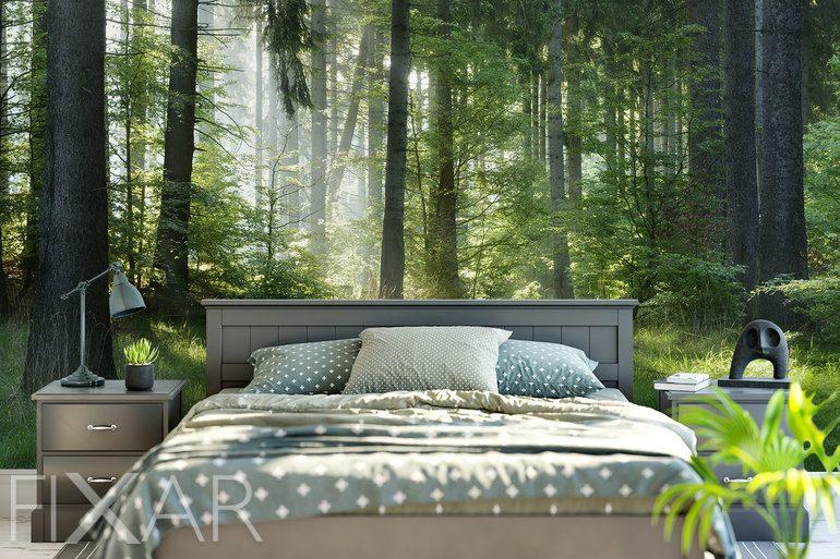 im au ergew hnlichen des waldlandes fototapeten wald fototapeten. Black Bedroom Furniture Sets. Home Design Ideas
